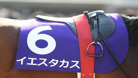 takasu-uma-335.jpg